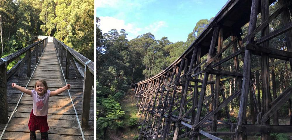 Noojee Trestle Bridge - Noojee Victoria