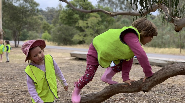 Forest school Melbourne