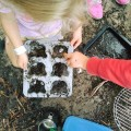 20 Nature play ideas & activities in your backyard